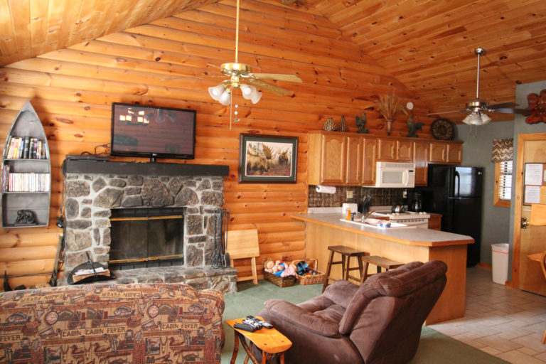 Fireplace and Kitchen Serenity Log Cabin