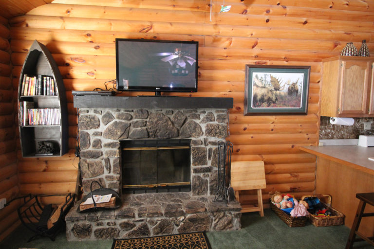Fireplace Serenity Log Cabin