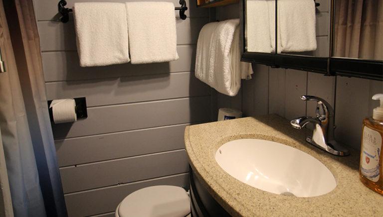 Bathroom #2 Deer Trail Log Cabin